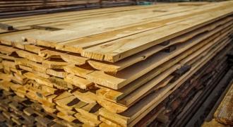 Bản tin ngành sản xuất gỗ tháng 02 - 2020