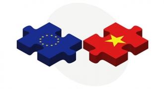 Hợp Tác Việt Nam – EU Bền Chặt, Vững Chắc