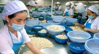 Phần mềm ERP sản xuất ngành hạt điều